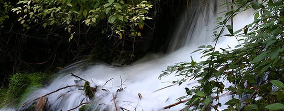 Mount Shasta Headwaters   Mount Shasta Bioregional Ecology Center