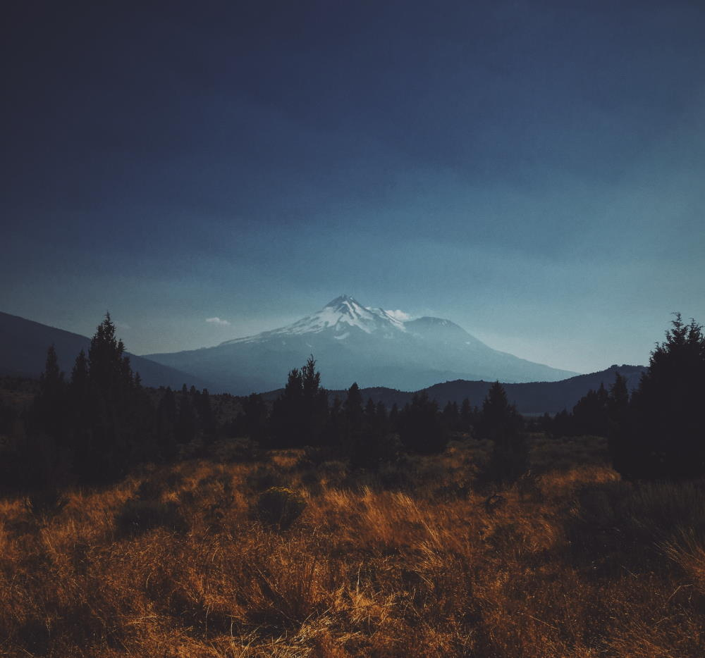 upcoming fire season, Community Resiliency, fire resiliency, wildfire preparation | Photo by Jeff Finley on Unsplash | Mount Shasta Bioregional Ecology Center