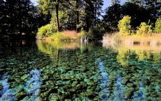 Fall River Springs, Ahjumawi Lavi Springs State Park, Delta Tunnel Project | MSBEC